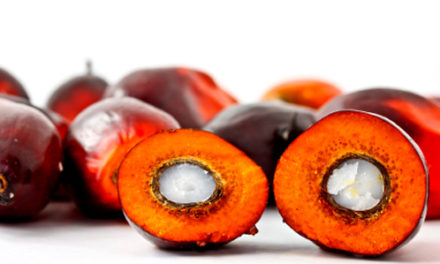 Red Palm Oil-Is really good for Health & Environment