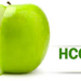 HCG Diet and How It Works-HCG Diet Plan