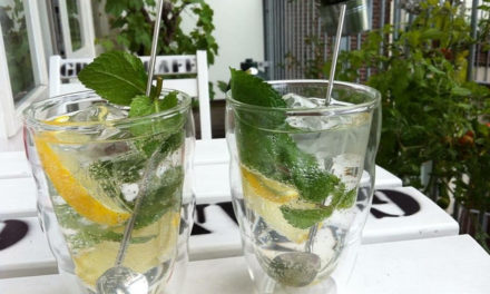 Healthy Detox Water Recipes for Weight Loss
