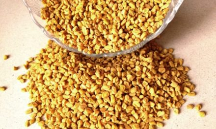 Eating Fenugreek (Methi Dana) Seeds For Hair Loss